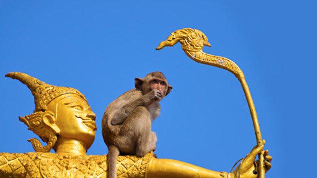 Taje Thajska (diashow Motani)