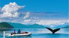 ALJAŠKA – Pobřeží Pacifiku