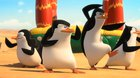 Tučniaky z Madagascaru