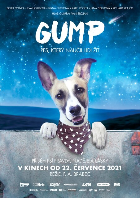 KINO: Gump - Pes, který naučil lidi žít