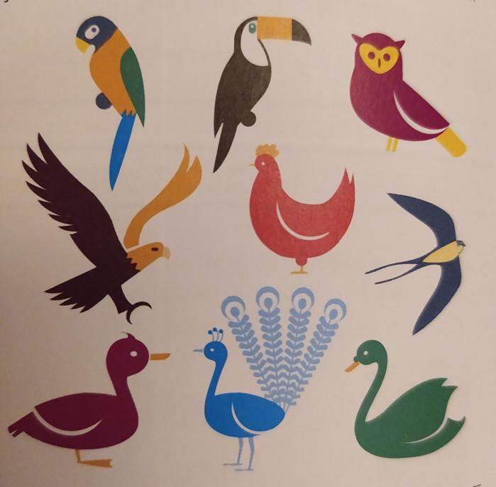 obrázek ptáků k druhému cvičení