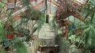 Slávnosť v botanickej záhradeONLINE