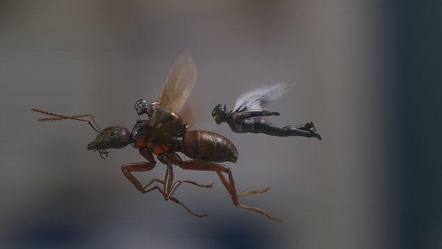 Ant-Man a Wasp (Letní kino)