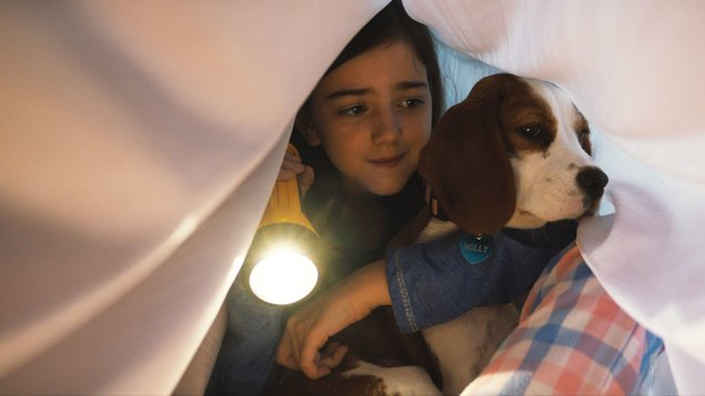 PSIA DUŠA 2 - Egy kutya négy útja