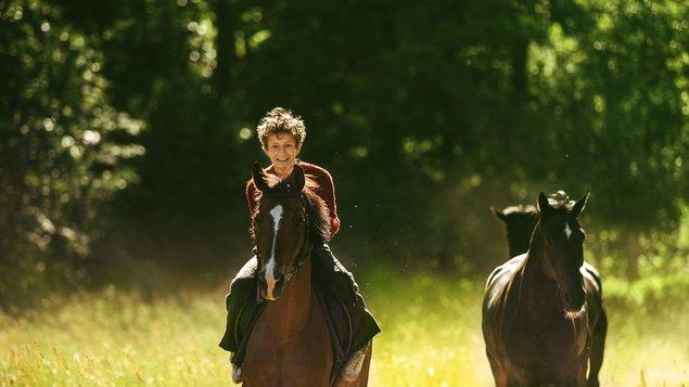 Poďme kradnúť kone