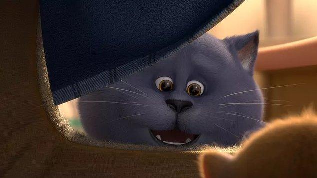 Smelé mačiatko