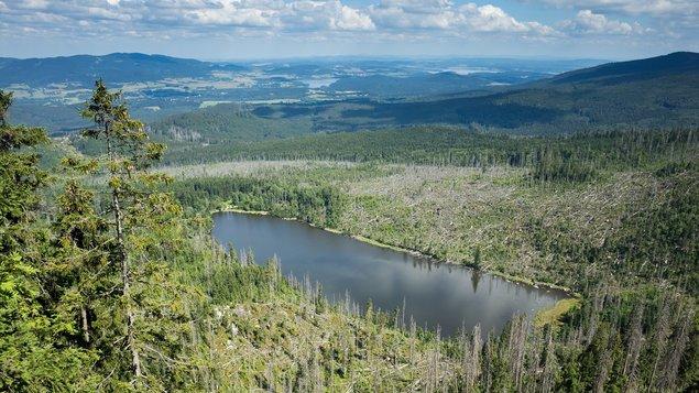 Bavorský les a Národní park Šumava