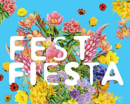 FEST FIESTA