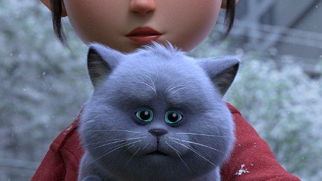 Příběh koček