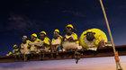 Dětské - Ovečka Shaun ve filmu: Farmageddon