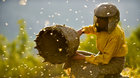 Země medu #mojekinoLIVE