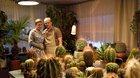 Zahradnictví: Nápadník - kino pro seniory