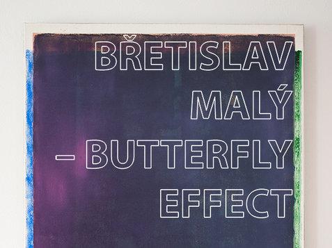 BŘETISLAV MALÝ – BUTTERFLY EFFECT