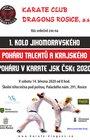 1. kolo krajského poháru v karate JSK ČSKe a poháru talentů - uskuteční se v náhradním termínu