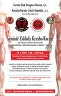 Seminář Základy Kusyho karate - uskuteční se v náhradním termínu