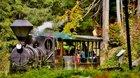 Autobusový zájazd na Oravu - plavba plťou, Oravský hrad, Oravská lesná železnica