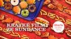 Ishorts - Krátké filmy ze Sundance 2019