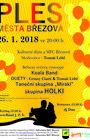 Ples města Březová 2018