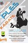 Ples karate 2019