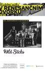 Wild Sticks - Bubenická show - Hudební pátky