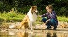 Lassie sa vracia