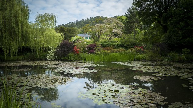 Malby moderních zahrad