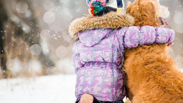 Vánoční sbírka pro psí a kočičí útulek