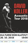 David Koller Acoustic tour 2018