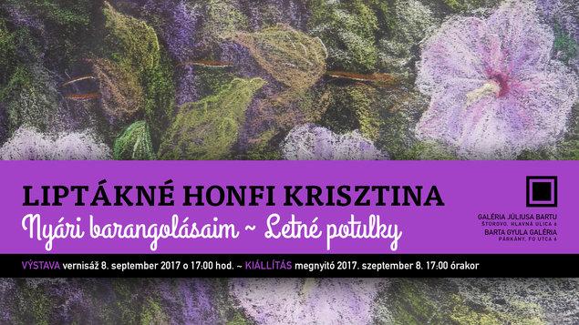 Liptákné Honfi Krisztina - Letné potulky