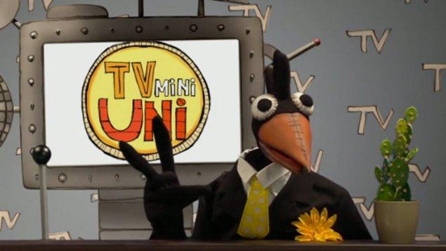TvMiniUni