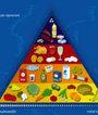 Význam výživy pro seniory ~ přednáška