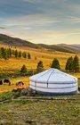 Mongolsko ~ Země neznámá