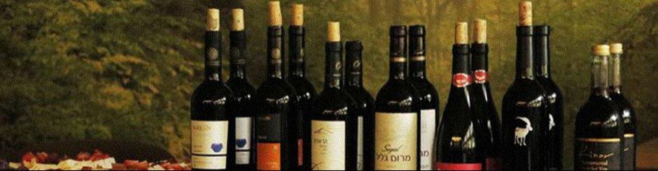 Komentovaná degustace izraelských vín
