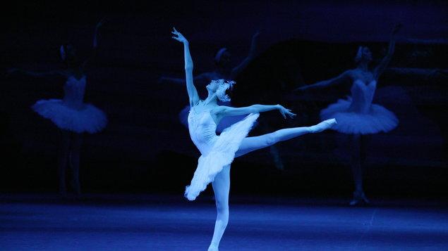 Labutí jezero (živě z Bolšoj baletu, Moskva) + vystoupení ZUŠ
