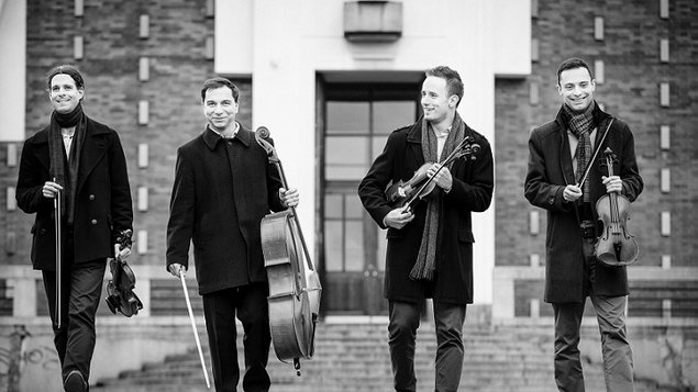 YOLO kvartet
