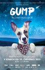 Gump - Pes, který naučil lidi žít - LETNÍ KINO