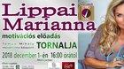 Lippai Marianna motivációs előadása - prednáška