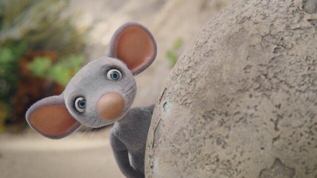 Myši patří do nebe