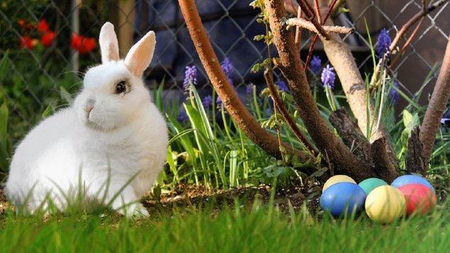 Velikonoční výstava 2020 - zrušeno!