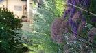 Otevřená zahrada