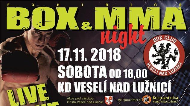 Exhibice Box a MMA Night