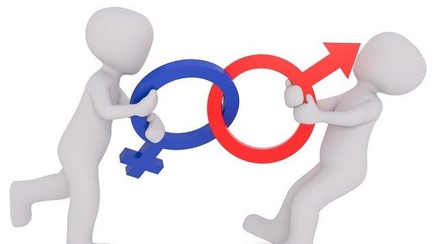 Proč muži neposlouchají a ženy neumí číst v mapách