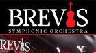 Symfonický Orchester BREVIS