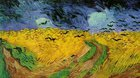 Vincent Van Gogh  z muzea Vincenta Van Gogha v Amsterdamu