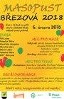 Masopust Březová 2018