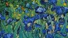 Vincent van Gogh – Nový způsob vidění