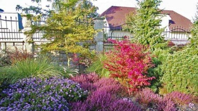 Anglické zahrady II.