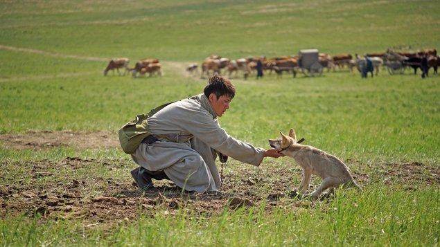 Totem vlka| Festival čínskych filmov