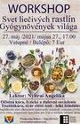 WORKSHOP - Svet liečivých rastlín, 27.05.2021