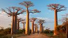 Madagaskar - cestovatelská diashow Martina Loewa